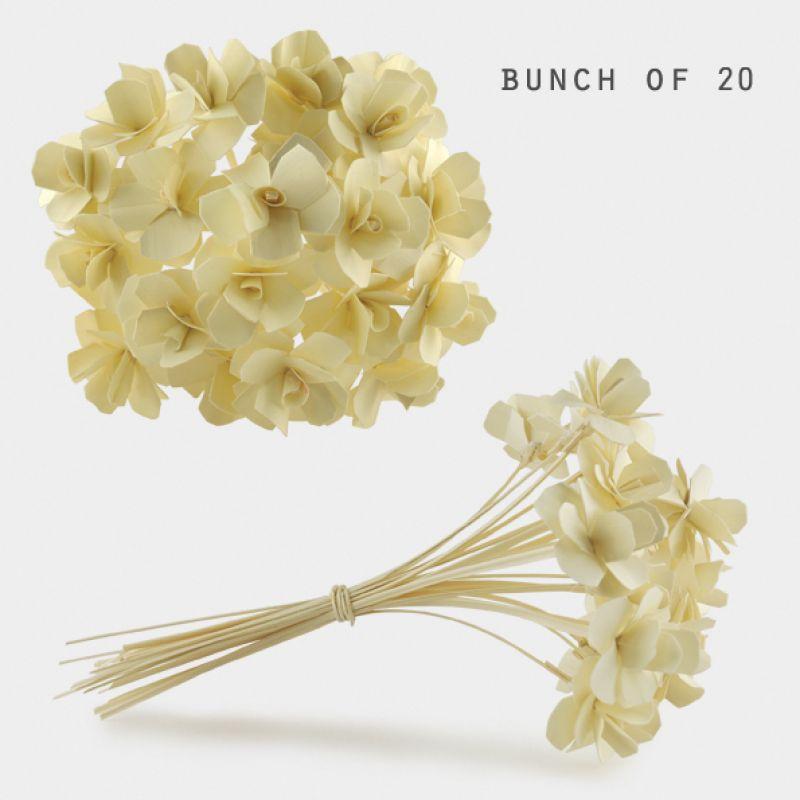 Μπουκέτο λουλούδια (20)- Φυσικό